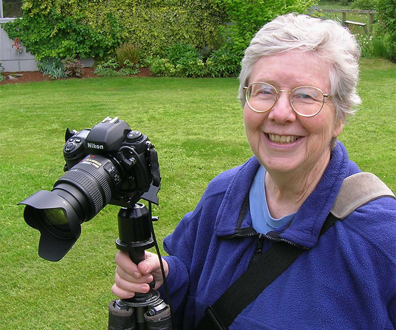Lynne Widdis Harrison